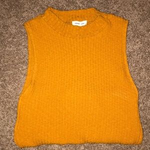 Silence + Noise Burnt Sienna Tank Top Sweater Crop